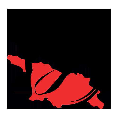 اکسون جورجیا